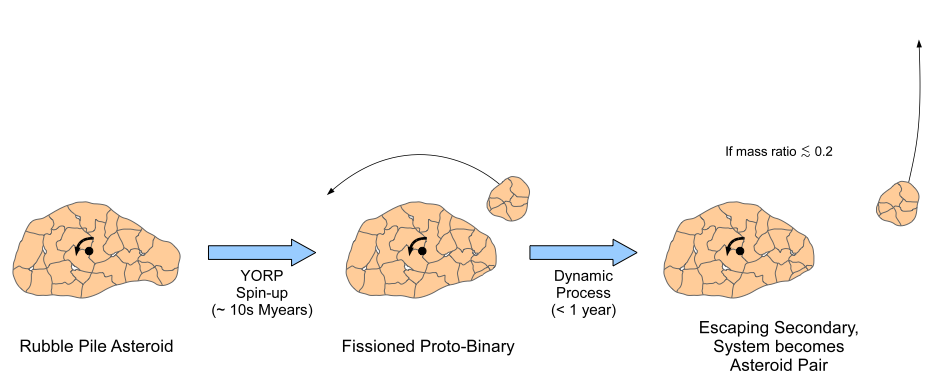 """A conceptual sketch showing the evolution of a small (D<10km) and rubble-pile asteroid. The parent asteroid made of small component pieces is spun up beyond the critical fission speed by the Yarkovsky-O'Keefe-Radzievskii-Paddack (YORP) effect in tens million years forming a proto-binary system. If the smaller companion is less than 60 percent the size of the larger asteroid, it will gently separate from each other at relatively low velocity due to internal dynamics. The system will become an asteroid pair (or """"divorced"""" asteroid)."""